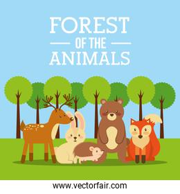 forest of the animals