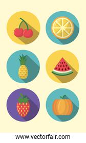 fruits cooking icons flat image design
