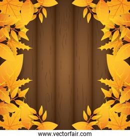 autumn leafs foliage over wooden frame