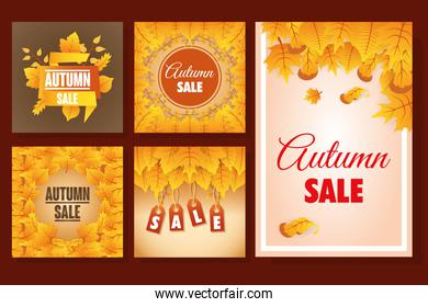 bundle of autumn sale seasonal labels