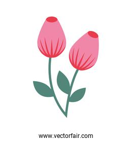 cute flower isolated icon