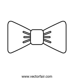 isolated fancy bowtie