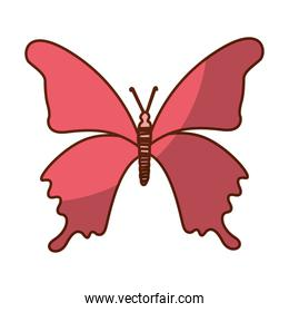shadow pink butterfly cartoon
