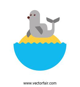 cute seal isolated icon