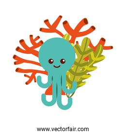 cute octopus isolated icon