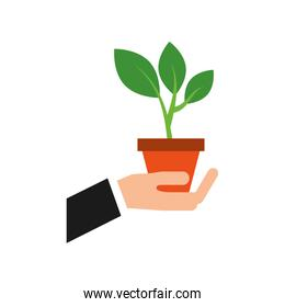 hand with pot plant growth business finance