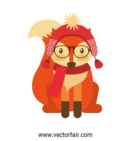 forest fox hipster with hat glasses