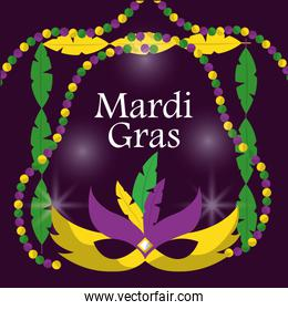 mardi gras carnival masks with feathers beads blur purple background