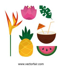 tropical set of flowers pineapple coconut cocktail watermelon