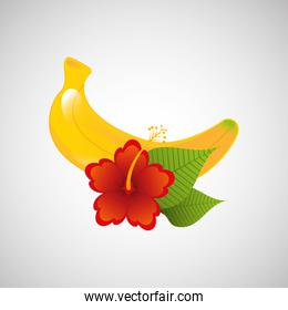 red flower and tropical banana fruit design