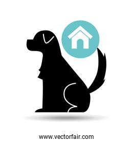 silhouette dog pet home icon