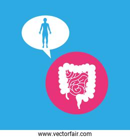 silhouette man intestine anatomy body