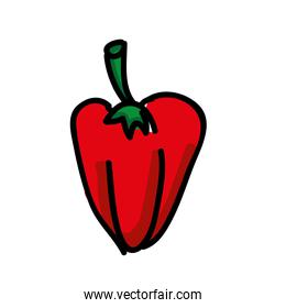 pepper fresh isolated icon design
