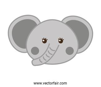 cute elephant isolated icon design