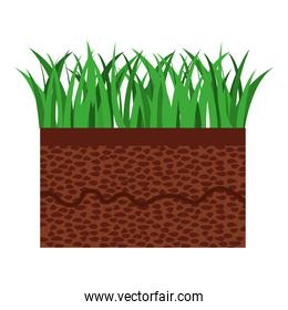 grass and terrain isolated icon design