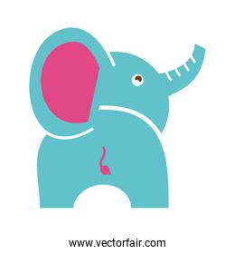 elephant cute isolated icon