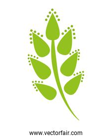 decorative leafs plant isolated icon