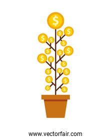 plant with coins money