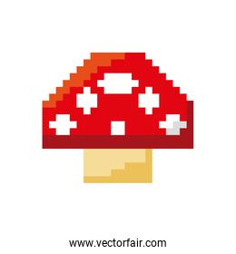 fongus game pixelated icon