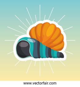 shell travel isolated icon