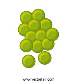 grapes fresh fruit drawing icon