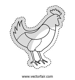 chicken meat butchery icon