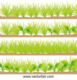 set of grass set of grass with four different styles