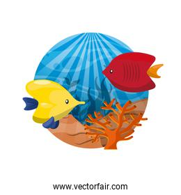 coral and fish icon. Sea life design. Vector graphic