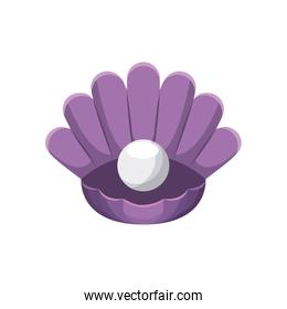 Shell with pearl icon. Sea life design. Vector graphic
