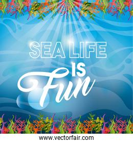 Coral and algae icon. Sea life design. Vector graphic