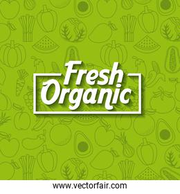 healthy organic vegetarian foods related icons image