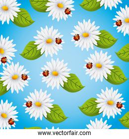 seamless pattern daisies flowers ladybug and leaves natural