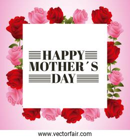 happy mothers day beautiful blooming red and pink rose flowers