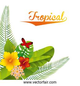 tropical nature