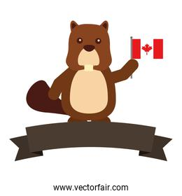 beaver with canadian flag and ribbon