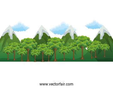 mountains with trees forest and snow scene