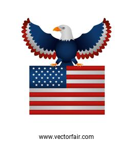 united states of america flag with eagle