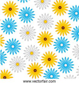 cute flower daisy decoration pattern