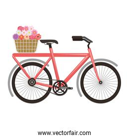 vintage bycicle with basket flowers romantic