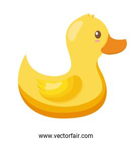 rubber duck toy on white background