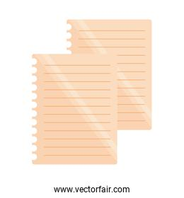 lines sheet school on white background