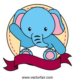 cute little elephant baby in frame with ribbon