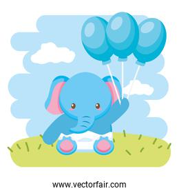 cute little elephant baby with balloons helium