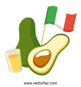 avocado with mexican flag and tequila cup