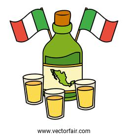viva mexico tequila bottle flags and cups