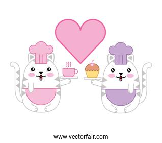 couple cute cats chefs with heart kawaii character
