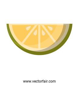 slice lemon citurs fresh image