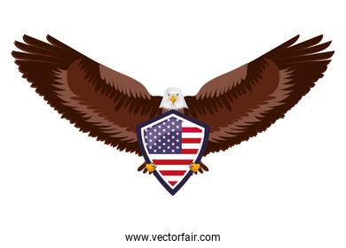 american eagle flag in shield national symbol