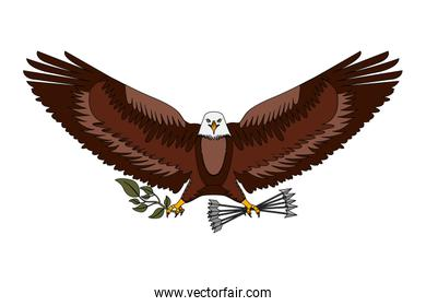 american bald eagle emblem with arrows and olive branch