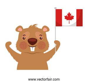 beaver of canada with flag isolated design